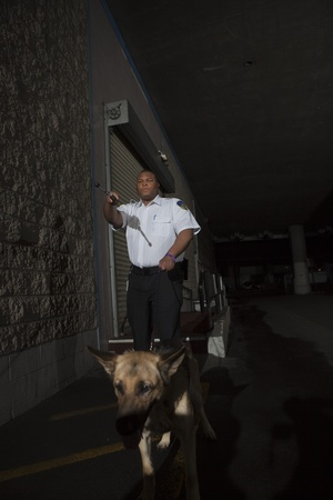 törekvés: Security guard in alleyway pursuit with guard dog