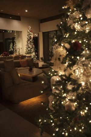 Christmas tree lit with fairylights Stock Photo - 12738394