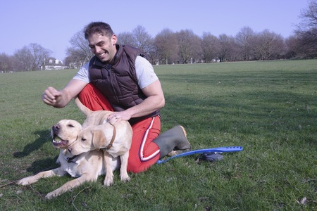 A man and his two dogs in the park Stock Photo - 12738436