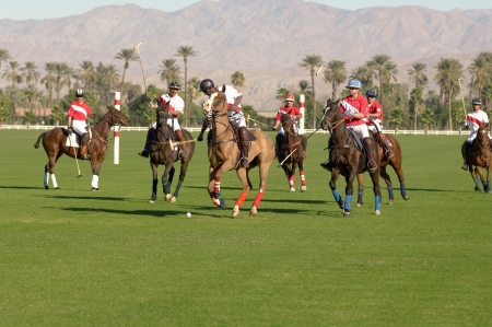 polo player: Polo players playing Match on polo field
