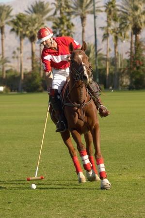 advancing: Polo Player Advancing Ball LANG_EVOIMAGES