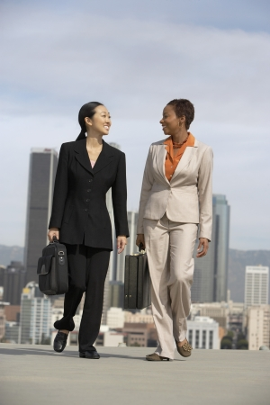 being the case: Businesswomen Conversing LANG_EVOIMAGES