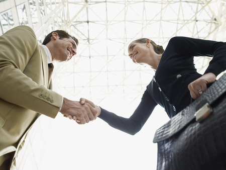30s adult: Businessman and businesswoman shaking hands (low angle view)
