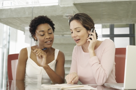 business roles: Two Businesswomen in Meeting