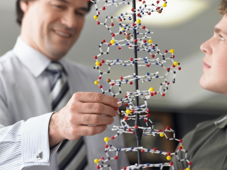 biological science: Teacher and Student with DNA Model LANG_EVOIMAGES