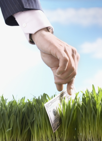 fortunate: Businessman Picking Up 50-Dollar Bill From Grass LANG_EVOIMAGES