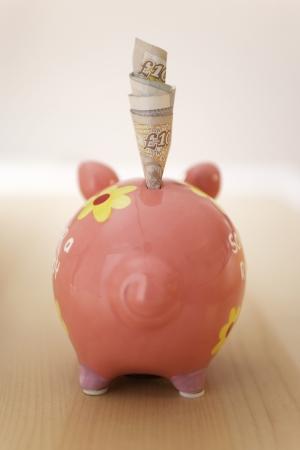 Saving Money LANG_EVOIMAGES
