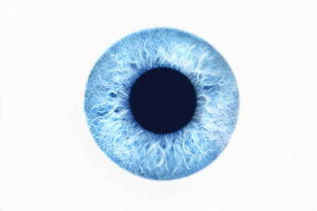 Blue eye on white background Stock Photo
