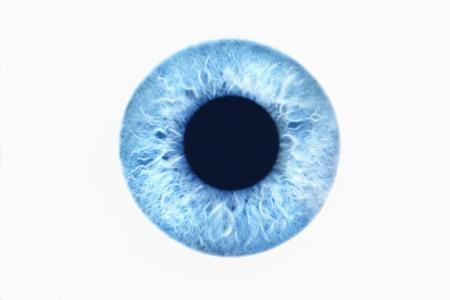 Ojo azul sobre fondo blanco