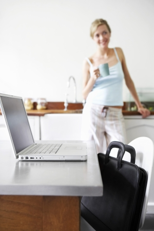 telecommuter: Woman Working from Home