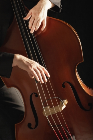 Man Playing Double Bass close up of hands Stock Photo - 19213763