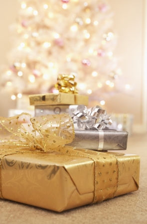 Christmas gifts on floor Stock Photo - 19108265