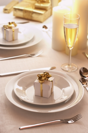 tableware: Place setting at Christmas