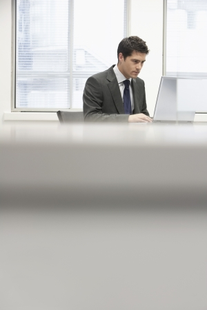 hooked up: Businessman Using Laptop