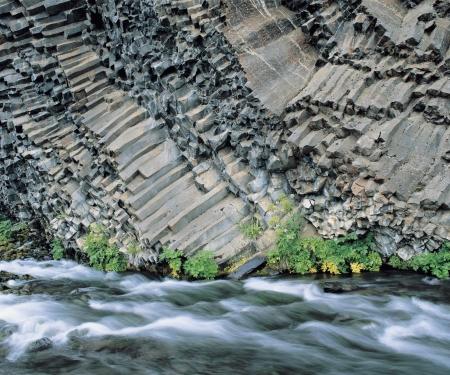 columnar: Plants and river at base of columnar basalt cliff