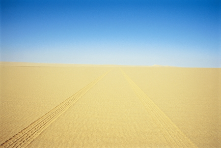 tire tracks: Tire Tracks Through the Desert
