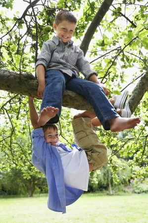 Niños trepando a un árbol Foto de archivo - 18886718