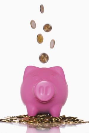 piggie bank: Piggy Bank LANG_EVOIMAGES