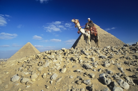 middle easterners: Camel Rider by Pyramids of Giza LANG_EVOIMAGES