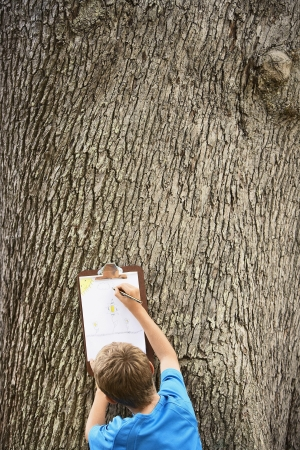 preadolescence: Boy Drawing by Tree