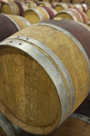 casks: Wine casks lying down in order LANG_EVOIMAGES