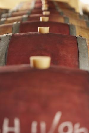 casks: Wine casks lying down in order selective focus