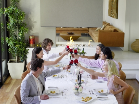 formal dinner party: Friends toasting across table at a formal dinner party side view
