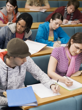 ethnic mixes: College Students Studying in Class LANG_EVOIMAGES