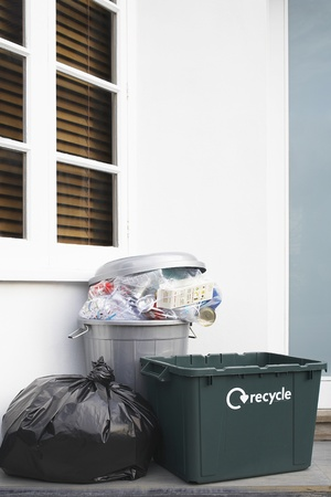 mundane: Garbage and Recycling Container Outside House