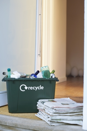 domesticity: Recycling Container on Doorstep LANG_EVOIMAGES