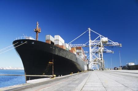 freight container: Buque de carga en el muelle