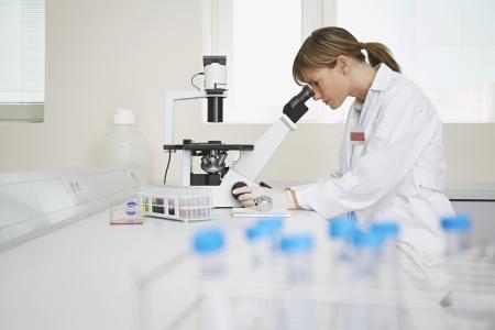 bata de laboratorio: Cient?fico que usa el microscopio en laboratorio