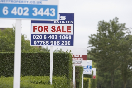 housing sales: Real estate for sale signs in a row by hedges