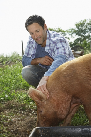 sty: Man holding pig in sty LANG_EVOIMAGES