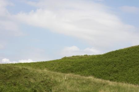 Grassy hillside Stock Photo - 19077645