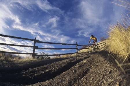 off path: Man mountain biking along path LANG_EVOIMAGES