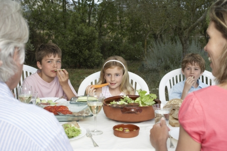Three-generation family with three children (6-11) sitting at table in garden Stock Photo - 19078369