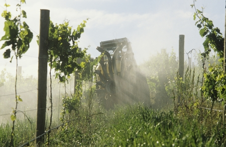 fungicide: Tractor spraying vineyard with fungicide Yarra Valley Victoria Australia. LANG_EVOIMAGES