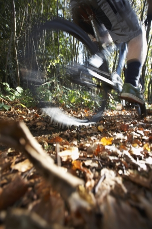 low section: Person on mountain bike in woodland low section LANG_EVOIMAGES