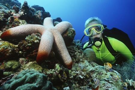 Femme plongeur bord de la grande étoile de mer Banque d'images