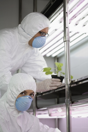florescent light: Workers in protective masks and suits in laboratory with plant LANG_EVOIMAGES
