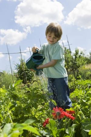 self sufficient: Boy watering flowers in garden