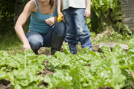 low section: Boy gardening with mother low section