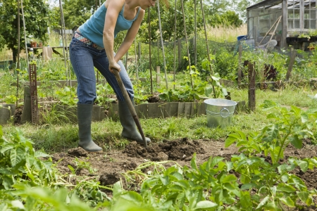 sufficient: Woman gardening LANG_EVOIMAGES