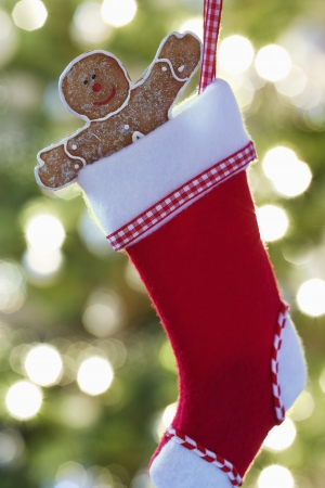 male likeness: Hombre de pan de jengibre en la media de Navidad