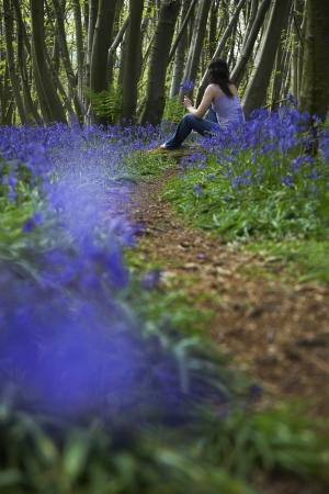 Woman Picking Wildflowers Stock Photo