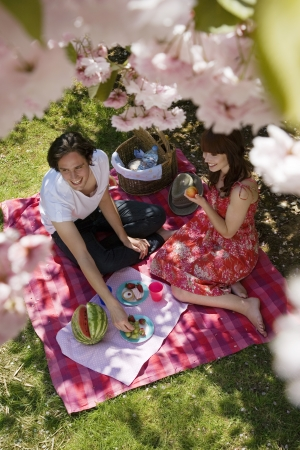 age 25 30 years: Young Couple Having a Picnic LANG_EVOIMAGES
