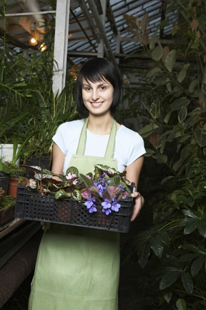 half length posed: Greenhouse Worker with Tray of Potted Plants LANG_EVOIMAGES