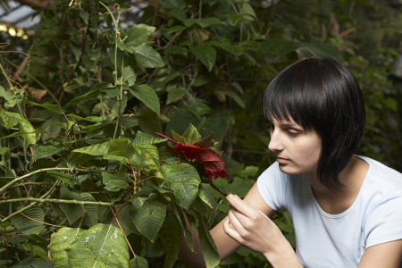 age 25 30 years: Woman Examining Leaf