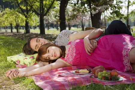 25 to 30 year olds: Young Couple Having a Picnic LANG_EVOIMAGES